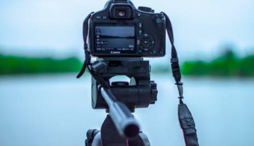動画広告が画像広告・テキスト広告より有益な理由を解析!
